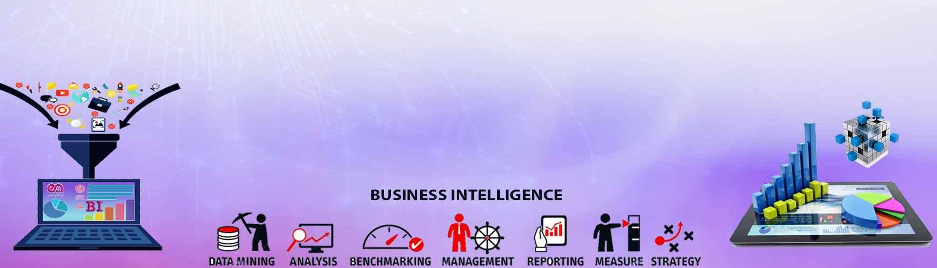 سریرگ هوش تجاری